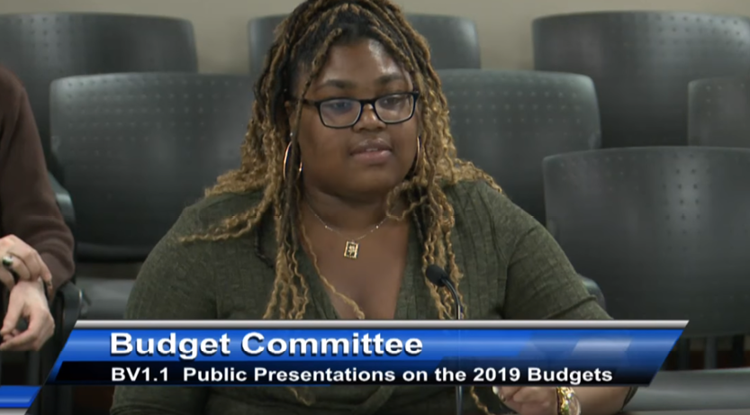 Annika L. to the City Budget Committee re youth spaces - February 2019